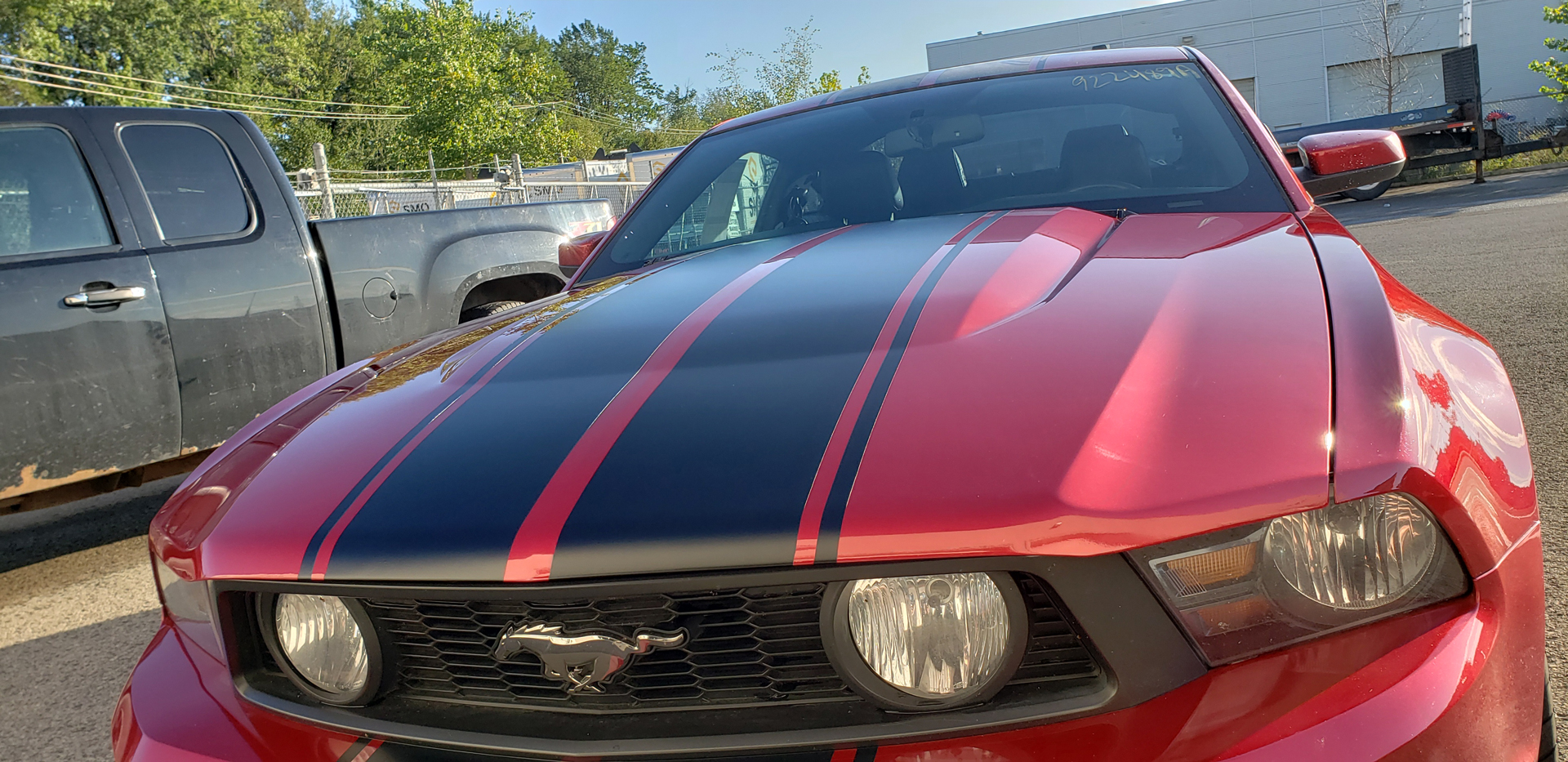 mustang-rouge-2